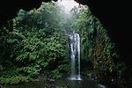 Parc national de la Montagne d Ambre..Petite cascade dans un ecrin de foret tropicale