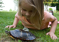 1R24-505z  Child looking at Painted Turtle with Gray Treefrog [Hyla versicolor] on turtle's back, Chrysemys picta, PRA