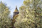 May 4, 2018; spring 2018 (Photo by Matt Cashore/University of Notre Dame)