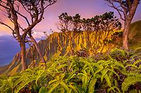 sunset view from Kalepa Ridge, Kalalau Valley, Na Pali Coast State Park, Na Pali Coast, Kauai, Hawaii, USA