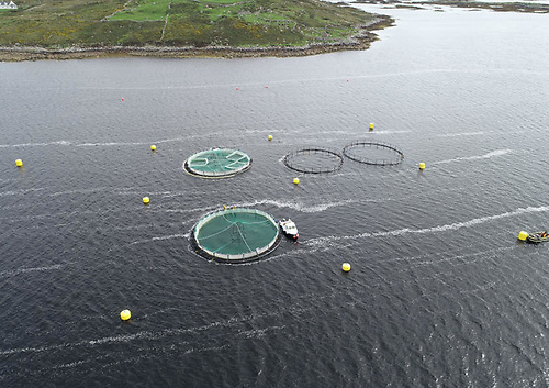 Overhead drone image of the Marine Institute's Lehanagh Pool research site in Co Galway