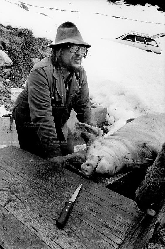 Switzerland. Canton Valais. Hèrens valley. Evolène. Killing the pig. Swiss alpine farmers. Alps mountains peasants.  Winter season. Snow. © 1995 Didier Ruef