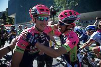 stage winner Sacha Modolo (ITA/Lampre-Merida) is congratulated by a teammate after the finish<br /> <br /> stage 17: Tirano - Lugano (SUI) (134km)<br /> 2015 Giro d'Italia