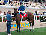 August 15, 2010.Wasted Tears, riden by Rajiv Maragh, in the winners circle after winning the John C. Mabee Stakes, at Del Mar Thoroghbred Club, Del Mar, CA