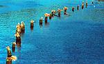 Pillings Pacific Ocean Oregon, USA, Pacific Ocean, Plains, woods, mountains, rain forest, desert, rain, Rose City, Portland, Lake Oswego, Pacific Northwest, Fine Art Photography by Ron Bennett, Fine Art, Fine Art photography, Art Photography, Copyright RonBennettPhotography.com © Fine Art Photography by Ron Bennett, Fine Art, Fine Art photography, Art Photography, Copyright RonBennettPhotography.com ©