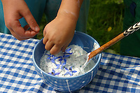 Kinder bereiten Kräuterquark mit verschiedenen Kräutern aus dem Garten, Quark wird mit Borretsch - Blüten verziert, Kräuter, Borago