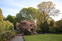 A walled garden at Birr, surrounded by ancient trees