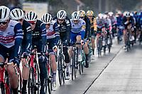 Mads Pedersen (DEN/Trek-Segafredo) positioned among teammates<br /> <br /> 82nd Gent-Wevelgem in Flanders Fields 2020 (1.UWT)<br /> 1 day race from Ieper to Wevelgem (232km)<br /> <br /> ©kramon
