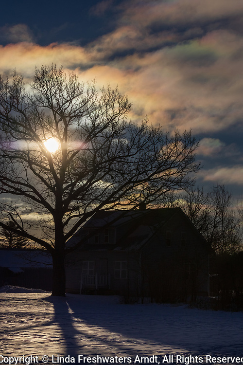 The harsh morning light creats an eerie feel to a northern Wisconsin homestead.