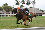 Simmard (no. 5), ridden by Javier Castellano and trained by Roger Attfield, wins the 19th running of the grade 2 Mac Diarmida Stakes for four year olds and upward on February 26, 2012 at Gulfstream Park in Hallandale Beach, Florida.  (Bob Mayberger/Eclipse Sportswire)