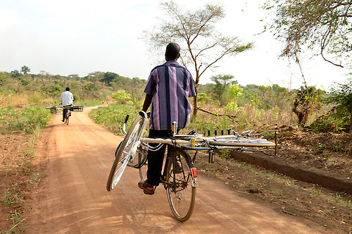 In northern Uganda, cyclists haul new bicycles to a nearby village.  The new bikes were purchased by a NGO to help community health workers travel more easily.