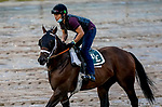 September 2, 2020: as horses prepare for the 2020 Kentucky Derby and Kentucky Oaks at Churchill Downs in Louisville, Kentucky. The race is being run without fans due to the coronavirus pandemic that has gripped the world and nation for much of the year. Scott Serio/Eclipse Sportswire/CSM
