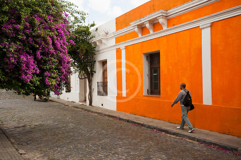 Uruguay, Colonia del Sacramento, Historic Quarter, cobbled street