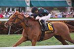 January 16, 2016: Manchurian High with jockey Luis Saez riding win the Sunshine Millions Turf at Gulfstream Park, Hallandale Beach (FL). Arron Haggart/ESW/CSM