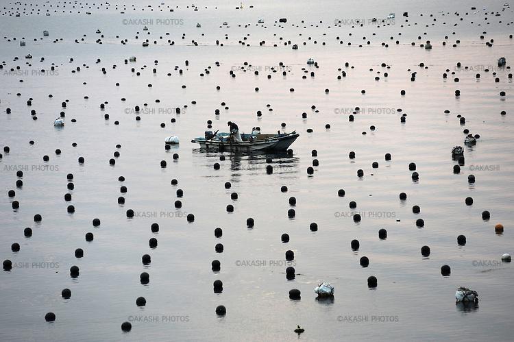 Pearl plantation in Shikoku. Japan.<br /> <br /> Plantation de perles à Shikoku. Japon.