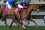 ARCADIA, CA  MARCH 18: #1 Madam Dancealot, ridden by Corey Nakatani,  #8 Midnight Crossing, ridden by Brice Blanc, and #9 Sassy Little Lila, ridden by Flavien Prat,in the stretch of the Santa Ana Stakes (Grade ll) on March 18, 2018, at Santa Anita Park in Arcadia, CA. (Photo by Casey Phillips/ Eclipse Sportswire/ Getty Images)
