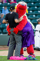 "Winston-Salem Dash mascot ""Bolt"" entertains the crowd by dancing with home plate umpire Brian Miller between innings of the Carolina League game against the Salem Red Sox at BB&T Ballpark on August 15, 2013 in Winston-Salem, North Carolina.  The Red Sox defeated the Dash 2-1.  (Brian Westerholt/Four Seam Images)"