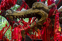Guilin, China.  Elephant Trunk Hill Park.  Red Ribbons Requesting a Wish Surround Zodiac Sign under a Tree.