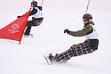 duel slalom