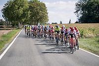 Team Trek-Segafredo ripping the peloton into pieces midway through the race<br /> <br /> 60th Grand Prix de Wallonie 2019<br /> 1 day race from Blegny to Citadelle de Namur (BEL / 206km)<br /> <br /> ©kramon