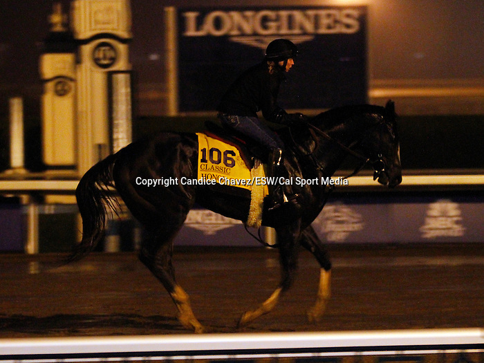 October 28, 2015: Honor Code trained by Claude McGaughey and owned by Lane's End Racing, and Dell Ridge Farm, entered in the Breeder's Cup Classic Grade 1 $5,000,000.  Candice Chavez/ESW/CSM