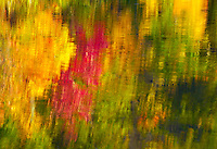 Autumn trees reflected in Beauty Lake, Pillsbury State Forest, Minnesota