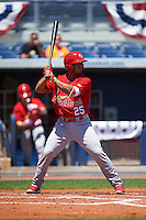 Palm Beach Cardinals catcher Chris Rivera (25) at bat during a game against the Charlotte Stone Crabs on April 10, 2016 at Charlotte Sports Park in Port Charlotte, Florida.  Palm Beach defeated Charlotte 4-1.  (Mike Janes/Four Seam Images)
