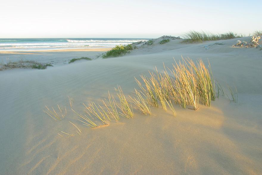 Sand dunes Sleaford Bay Eyre Peninsula South Australia