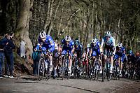 peloton  up the Kemmelberg<br /> <br /> Bredene Koksijde Classic (2019) ( former Handzame Classic )<br /> Bredene > Koksijde 199km (BEL)<br /> <br /> ©kramon