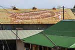 Turtle Image On Metal Roof
