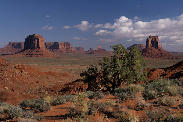View from Artist's Point in Monument Valley, Navajo Indian Tribal Park, Arizona, USA. . John offers private photo tours in Monument Valley and throughout Arizona, Utah and Colorado. Year-round.