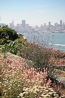 Gardens of Alcatraz with San Francisco skyline