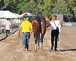 8.7.10 Blame on his way to the spit box after winning the Whitney