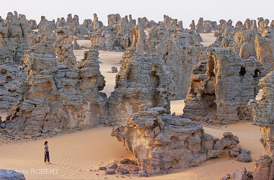 """Adossé au Tassili N'ajjer algérien, le tassili de Maghidet est un labyrinthe de grès s'étirant sur 45 km de long. Ignorant les frontières, des Touaregs empruntent encore les anciennes pistes caravanières qui parcouraient ces massifs. Libye..Except some moufflons  hunters, Touaregs avoid passing in The Tassili of Maghidet natural fortress, nest of """"djenoun"""" or evil geniuses. At dawn, you have to climb on a sandstone peak to discover this amazing rocky labyrinth streching on a pink sand crescent of 45 km long. Libya..."""