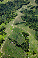 aerial photograph of Sonoma County Mountain Vineyards, Mayacamas Mountains, Sonoma County, California