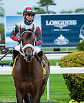 May 8, 2021: Firenze Fire, ridden by Irad Ortiz, Jr. wins the 2021 running of the Runhappy S. at Belmont Park in Elmont, NY. Sophie Shore/ESW/CSM