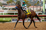 DEL MAR, CA  AUGUST 20:  #4 Edgeway, ridden by Joe Bravo, returns to the connections after winning the Rancho Bernardo Handicap (Grade lll) on August 20, 2021 at Del Mar Thoroughbred Club in Del Mar, CA.  (Photo by Casey Phillips/Eclipse Sportswire/CSM)