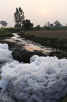 Tannery waste water accumulates on farmland on the outskirts on Kanpur. The water emanates from nearby leather tanneries which release tainted water directly onto local farmland.