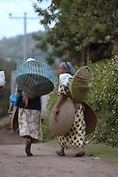 Addis Abeba,Etiopia. Donne che trasportano le pentole per preparare il pane tipico etiope, la Injera..Women carring plate to prepapre the tipical etiopian bred, the Injera