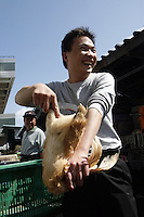 A chop Boy slaughters a live chicken in the Futian agriculture and produce market.<br />