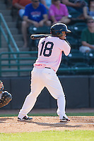 Eduard Pinto (18) of the Hickory Crawdads at bat against the Augusta GreenJackets at L.P. Frans Stadium on May 11, 2014 in Hickory, North Carolina.  The GreenJackets defeated the Crawdads 9-4.  (Brian Westerholt/Four Seam Images)