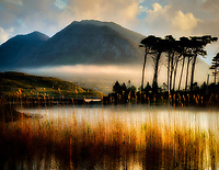 Sunrise on Derryclare Loch/lake with some of the 12 Ben Mountains and edge reeds. County Galway, Connemara, Ireland
