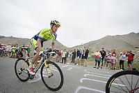 later stage winner Rafal Majka (POL/Tinkof - Saxo) up the Col d'Izoard (HC/19km/6%)<br /> <br /> 2014 Tour de France<br /> stage 14: Grenoble - Risoul (177km)