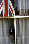 Padstow Hobby Horse  model in a window and union jack flag 1970s UK