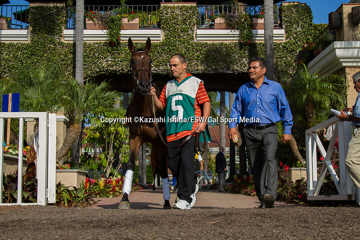 AUG 10,2014:Moulin de Mougin,ridden by Mike Smith,wins the Jonh C. Mabee Stakes at Del Mar in Del Mar,CA. Kazushi Ishida/ESW/CSM