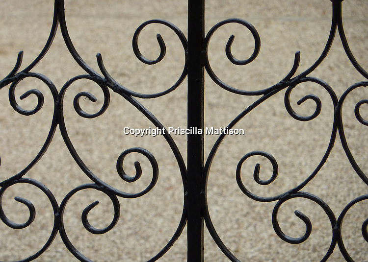 A section of wrought iron gate has a black curlicue pattern.