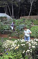HS18-006x  Working in vegetable garden