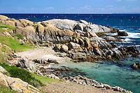Beach on Montague Island, New South Wales South Coast and Coastal Island bird surveys