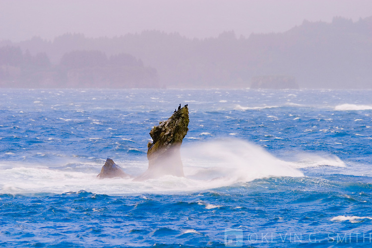 Waves breaking on rocky point, fall storm, Thumbs up cove, Kalsin Bay, Kodiak Alaska, USA.