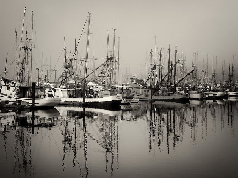 Boats with fog at Newport Harbor. Oregon